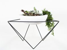 A Statement Plant Stand to Liven Up Any Space // KKDW Low Plant Stand
