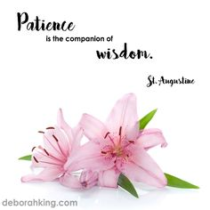 "Inspirational Quote: ""Patience is the companion of wisdom."" - St. Augustine ‪#‎Wisdom‬ ‪#‎Patience‬ ‪#‎StAugustine‬"