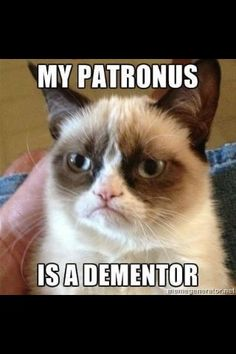 Grumpy Cat - Patronus  Seriously can not stop laughing!
