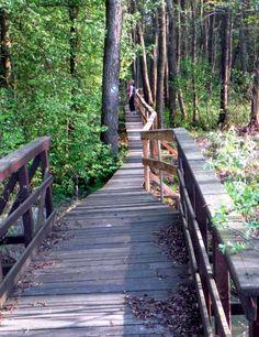 Poleski Park Narodowy - Ścieżki przyrodnicze PPN