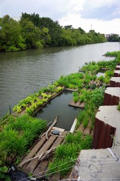 We visit the floating gardens in the Chicago river. We employ water conservation into all of our designs and advocate for the river as public space. Floating Architecture, Landscape Architecture, Landscape Design, Pond Design, Garden Design, Small Gardens, Outdoor Gardens, Agriculture Durable, Floating Garden