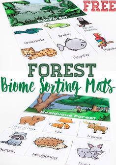 Compare types of forests and the animals that live there with these free printable Forest Biome sorting mats. As your kids learn the different between deciduous forests and rainforests, these sorting mats will be a fun way to learn about the animals that live in those biomes.