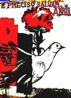 Chico Nogueira: Liberdade sem máculas