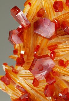 Minerals, Crystals & Fossils — Vanadinite crystals on blades of Barite Minerals And Gemstones, Rocks And Minerals, Buy Gemstones, Natural Crystals, Stones And Crystals, Gem Stones, Orange Crystals, Beautiful Rocks, Mineral Stone