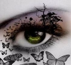 Want to fly through your eyes?It would be possible when you wear butterfly eye makeup. You would get astonishing look after getting this makeup. Pretty Eyes, Cool Eyes, Beautiful Eyes, Butterfly Eyes, Butterflies, Butterfly Artwork, Green Butterfly, Photos Of Eyes, Crazy Eyes