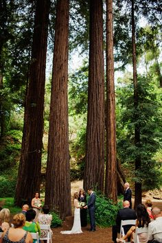 Laid-back Big Sur Wedding in the woods by @ryanflynnphoto featured on magnolia rouge. www.ryanflynnphotography.net