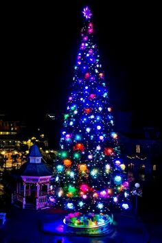The 2013 christmas Xmas tree in Main Street Disneyland Paris Christmas, Christmas Travel, Disney Christmas, Xmas Tree, Christmas Tree Decorations, Holiday Decor, Disney Parks, Walt Disney, Disney Pictures