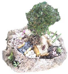 Jardín plantado en piedra