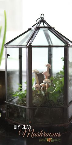 How to Make Clay Mushrooms for indoor planters and terrariums.
