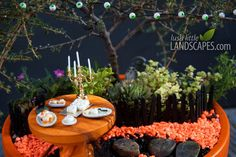 Halloween Miniature Garden Preview | Lush Little Landscapes « How to Make Miniature Fairy Gardens for Centerpieces, Gifts