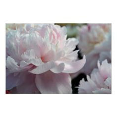 >>>Are you looking for          	Cloud of Peonies Poster           	Cloud of Peonies Poster online after you search a lot for where to buyDeals          	Cloud of Peonies Poster today easy to Shops & Purchase Online - transferred directly secure and trusted checkout...Cleck Hot Deals >>> http://www.zazzle.com/cloud_of_peonies_poster-228280915647447984?rf=238627982471231924&zbar=1&tc=terrest