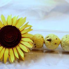 provetta girasole#seed paper