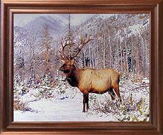 Big Bull Elk Antler Mountain Wildlife Animal Wall Decor M... https://www.amazon.com/dp/B01J383BDW/ref=cm_sw_r_pi_dp_x_iNFaybZ7PJQRV