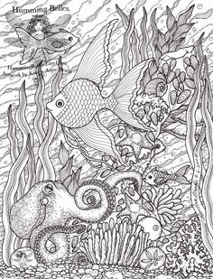 colouring book page for adults - Pesquisa Google