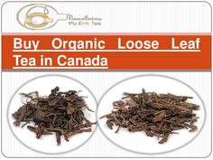 Buy Organic #Loose #Leaf #Tea #Canada. Click on the image to see benefits of this tea.