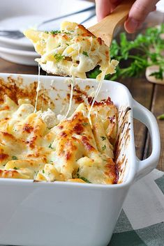 Creamy, cheesy packed chicken Alfredo pasta bake with three kinds of cheese and plenty to go around. Lots of gooey, stringy cheese in this fall casserole! Alfredo Pasta Bake, Fettucine Alfredo, Alfredo Recipe, Chicken Alfredo, Alfredo Sauce, Casserole Dishes, Casserole Recipes, Pasta Recipes, Chicken Recipes