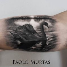 realistischer schwan auf see tattoo von paolo murtas - Mode Deutsch Wicked Tattoos, Body Art Tattoos, Cool Tattoos, Tatoos, Portrait Tattoos, Bird Tattoos, Leg Tattoos, Schwan Tattoo, Tattoo Gesicht