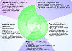 https://flic.kr/p/5XUVSM | DITP011: Figure 3.5 | The Design Spiral. Illustration courtesy of Biomimicry Guild. Shedroff, Nathan. 2009. Design is the Problem: The Future of Design Must be Sustainable. New York: Rosenfeld Media. www.rosenfeldmedia.com/books/sustainable-design/
