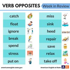 Verb Opposites: Week in Review