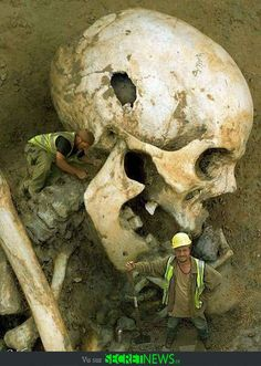Giant skeletons of an unidentified human race have been excavated around the world, lending credence to the strange stories of Nephilim in ancient texts. According to the book of Genesis, Nephilim.