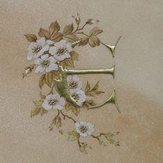 Image result for flower enluminure