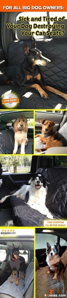 If you plan on taking your pup out for fun adventures this summer, protect your seat from fur and dirt with a 4Knines Seat Cover.  Save time cleaning fur out of your car!  Get yours today http://4knines.com/pages/4knines-luxury-covers-for-dogs