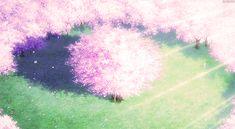 Cherry Blossom animated GIF