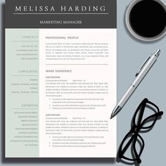 Professional Resume Template For Word  Pages The Carrie
