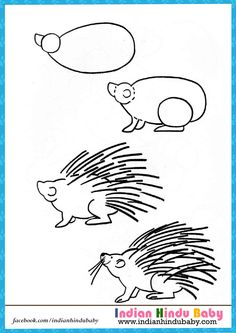 teach your kid to draw porcupines with simple drawing tips - Simple Drawing For Kid