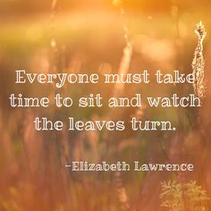 """Everyone must take time to sit and watch the leaves turn."" #quote #autumn"