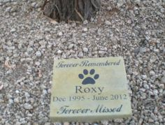 "Amazon.com: Personalized Engraved Pet Memorial Step Stone 11""x 11"" Sq 'Forever Remembred Forever Missed': Patio, Lawn & Garden"