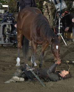 <3 Viggo bonded so much with the horse he rode in the Lord of the Rings series that after they finished filming, he purchased the horse from its owner.    I'd like to point out he ALSO bought the horse used by Arwen's stunt double in LOTR: The Fellowship of the Ring when it was put up for auction, and GAVE IT TO THE STUNT DOUBLE because she couldn't afford it herself.    Wonderful human being.