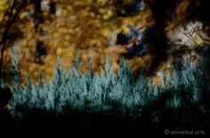 MARIO STRACK - Photograph 1 Artcard  Bilder Fotografie Foto Kunst Karte Bild art