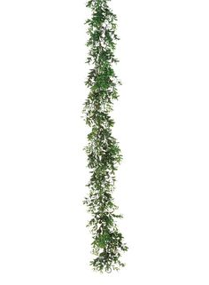 Artificial Boxwood Garland in Green<br>6' Long