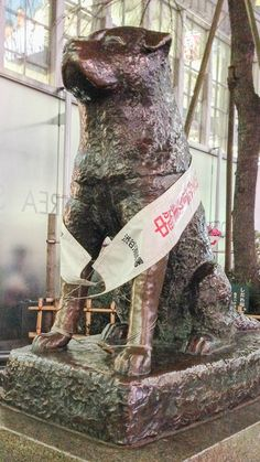 """At Shibuya Station in Tokyo, you'll find a monument honoring Hachiko, a Akita Inu dog who was so intensely loyal to his owner that after the man died suddenly at work, Hachinko waited at the train station every day for 12 years hoping he would come home. The Richard Gere movie """"Hachi"""" was based on this story."""