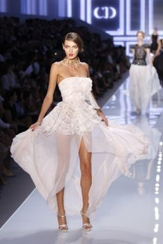 Dior haute couture    jaglady