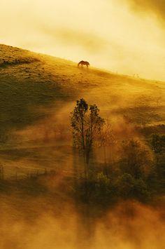 Landscapes photo by Cornel Pufan