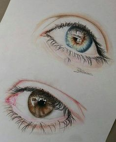 drawing the eye with color pencil