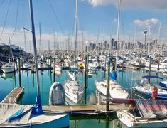 """Right in the heart of Auckland's C B D is this marina, home to thousands of beautiful boats. A popular name fo Auckland is """"City of Sails"""",  you can see why. From here the boats can empty out into a sparkling harbour and outer gulf where the Americas Cup is held."""