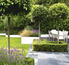 DK Garden Design Book photo