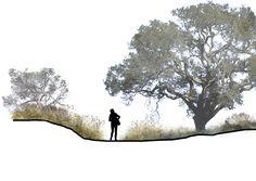 Sectional Planting - Eric Arneson
