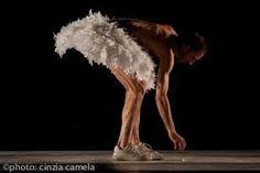 Risultati immagini per Cinzia Camela