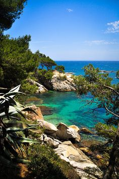 Cala del Pi looks a bit like the Life of Pi - a fantasy world. But it is true. This is the beautiful Costa Brava. A nature lovers paradise in #Spain