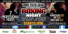international Boxing Night