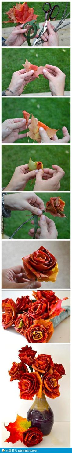 #DIY #Crafts this isn't dress related, but I know you were thinking paper flowers. There should be no shortage of leaves in peeping season. Not sure how they would turn out in real life though.