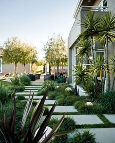 Creating Modern Touch at Your Garden : Astonishing Rectangular Stepping Stone At Manicured Garden