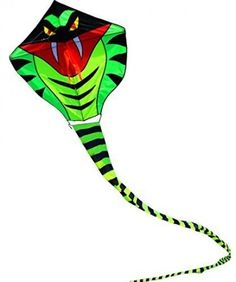 Hengda Kite 15m Large Power Snake Kites