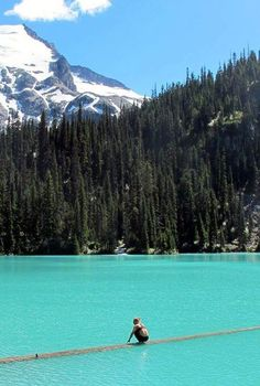 Joffre Lake, Vancouver, BC. One of the most beautiful lakes in all of North America...and perhaps even the world. #ILoveCanada