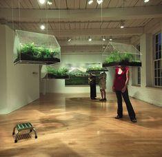 terrarium art installation - Google zoeken