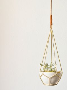 Add a bit of greenery to your room with a few succulents  #DIY